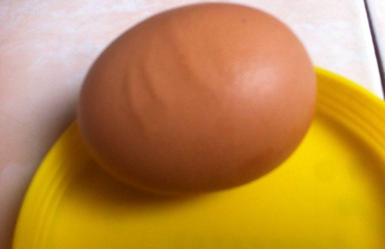 Lafal Allah ( Tulisan Arab ) Pada Kulit Telur, di Keluarga Sukri – Rafia Warga Jln. Manuntung 1 No. 11 RT. Sepinggan Baru Kec. Bal-sel Kota Balikpapan